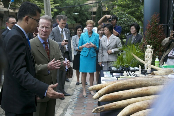 Assistant Secretary for International Narcotics and Law Enforcement Affairs William R. Brownfield views confiscated ivory in Thailand with Mr. Theerapat Prayoonsit, Deputy Chief of the Department of Natural Parks. INL works closely with international partners to strengthen law enforcement cooperation to combat illicit wildlife trafficking. (September 2013)